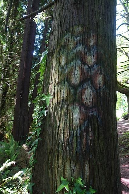 painting on bark