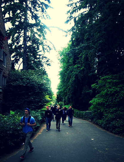 The University of Washington is like going to school in a forest or park.