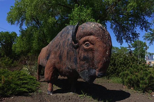 This iconic buffalo has aged gracefully and it along with the previous two artifacts should be integrated to create a unique public space for the future Inglewood Brewery District (IBD).