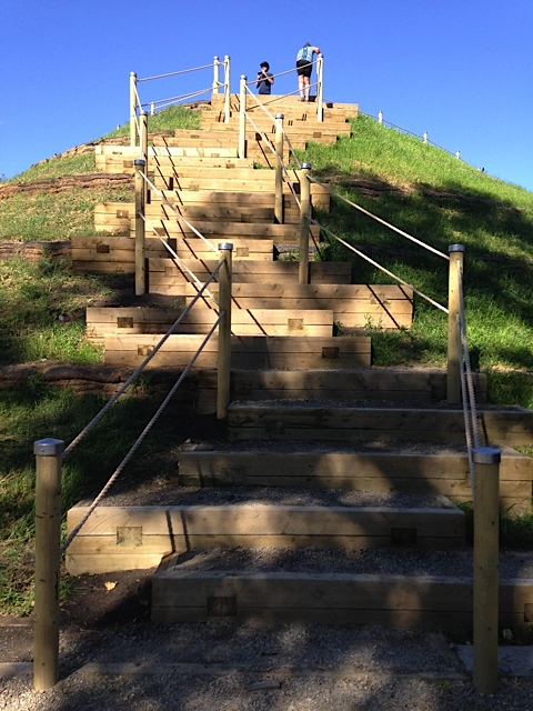 Climbing the stairs to The Rise will be a bit of a challenge for some, especially with in the winter.