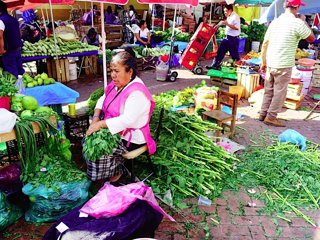 The Xochimilco market was a beehive of activity of merchants, deliveries and shoppers.  It was full of colour and smells, exactly what a market should be.
