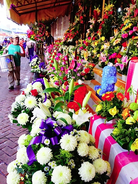 Wonderful display of flowers along on of the streets at the Xochimilco market. Flowers are big business in Mexico City, with incredible displays in almost every church we went into.