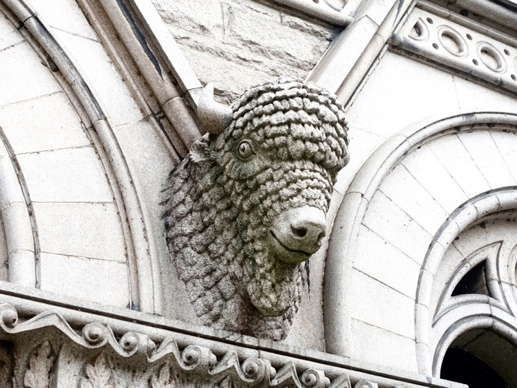 Judy: Yes there are buffalos in Buffalo, this one is on the iconic Post Office Building. So many great turn of the century buildings. You would love it here. R