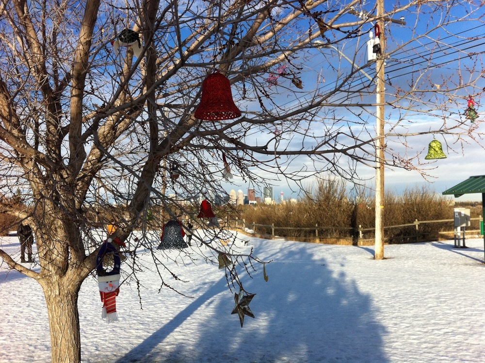 River Park dog walkers add a personal touch to the park at Christmas.