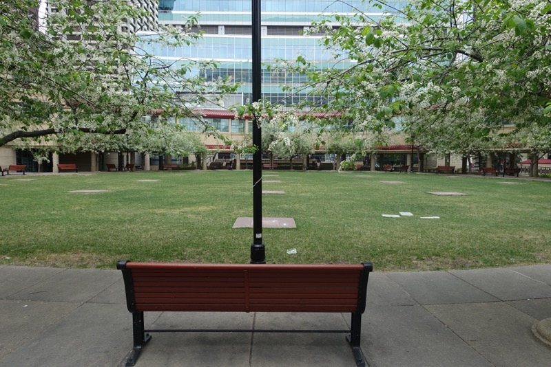 James Short Park is a quiet oasis in a sea of office towers. It is a peaceful place to sit, relax and chat.