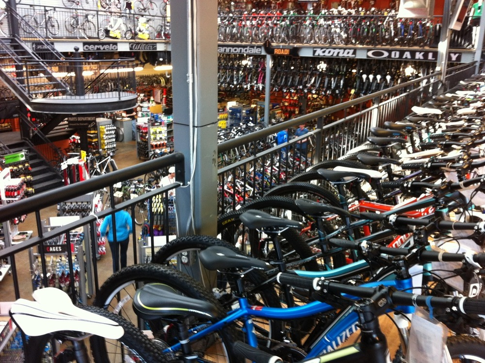 Bow Cycle is 50,000 square feet on two floors. It is sight for sore eyes.