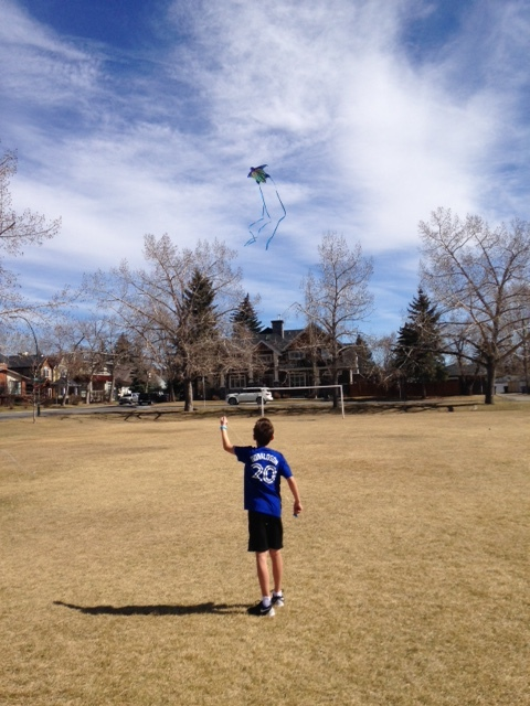 Even with big trees and telephone poles and wires, Grand Trunk Park can be a fun kite flying spot.