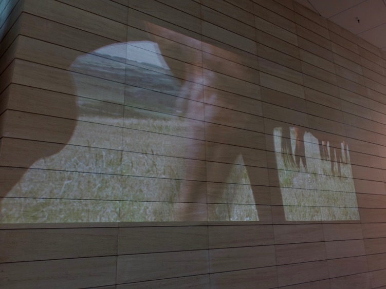 In addition to the vignettes are two video projectors subtlety showing horses grazing in a pasture in the Foothills.  It is very surreal to have these movie-size images in the lobby of a skyscraper in the middle of downtown.  It creates the feeling you are in contemporary art gallery.
