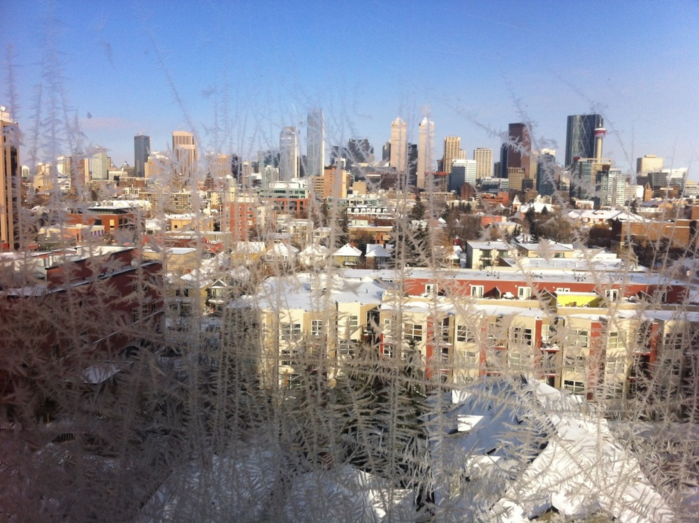 View from the Brekke's tree house of the downtown skyline on a cold winter day.