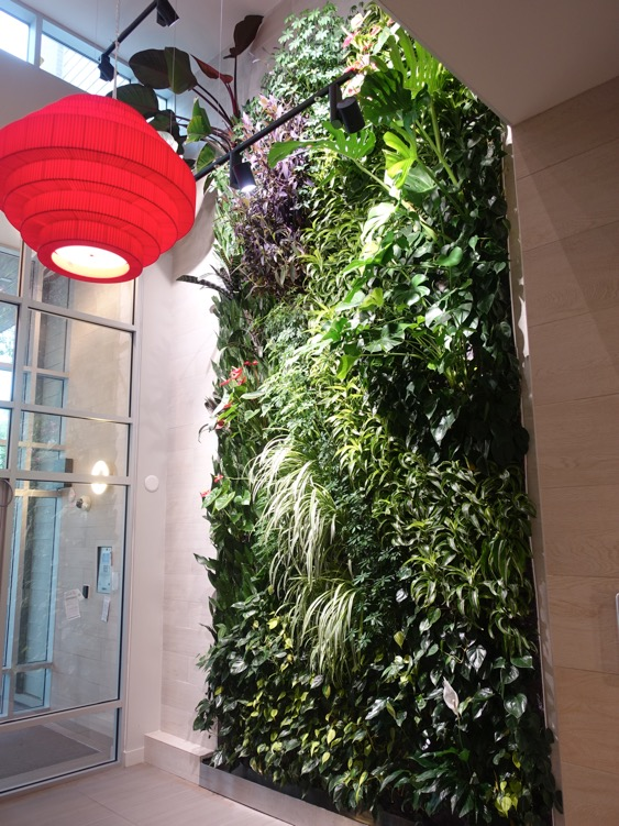 Ven's living wall creates a dramatic entrance for such a small space.