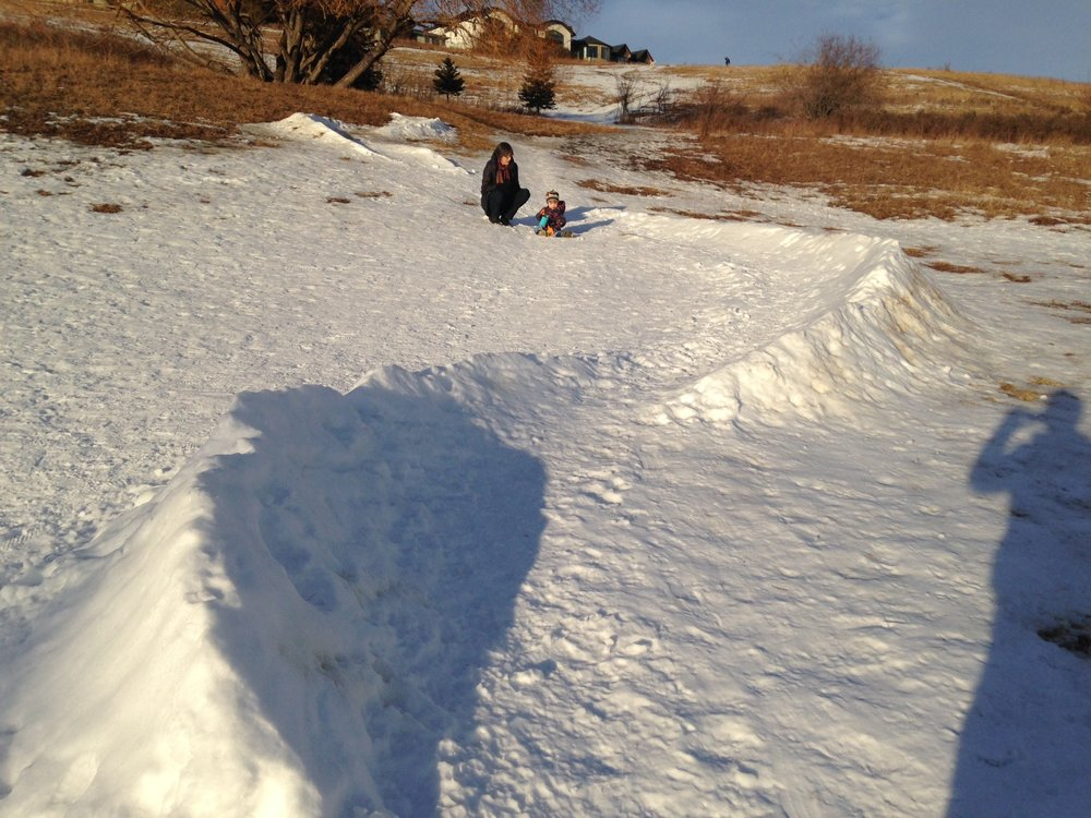 Some enterprising locals created this luge-like toboggan run in a nearby dog park.  How can we encourage more DIY winter play infrastructure?