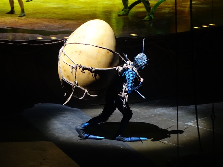 If you are in Montreal, you have to go to a Cirque du Soleil show.  We caught the OVO show at the Bell Centre - it was a wonderful smash-up of ballet, gymnastics, circus, music and visual arts .  Fun entertainment for everyone!