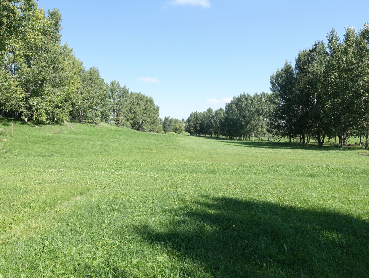 Highwood Golf Course tree-lined fairway.