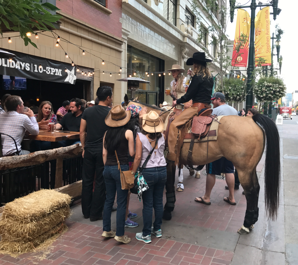 Calgarians love to horse-around on Stephen Avenue.