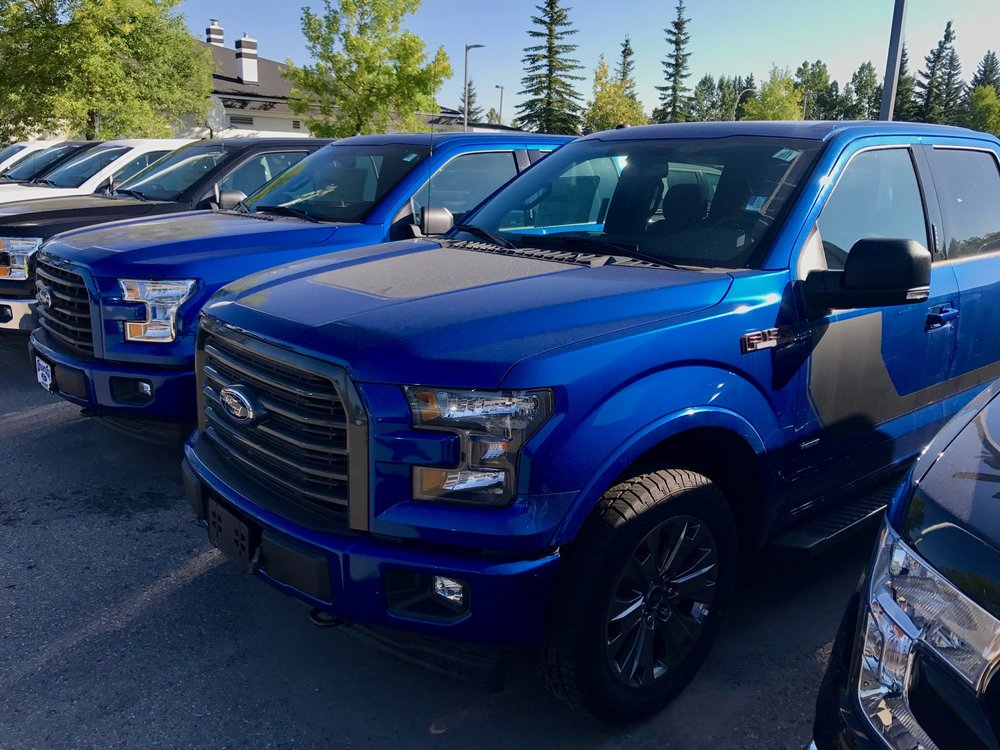 I went to a Ford dealership in Calgary to get a photo and found an entire row of Ford 150 trucks, must have been 50+ including several blue ones.