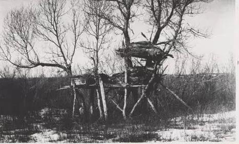 Blackfoot burial platform
