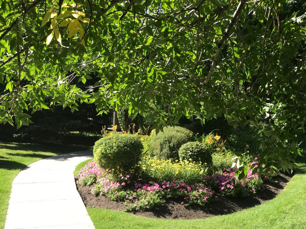 Lush garden pathways create pastoral backyards.