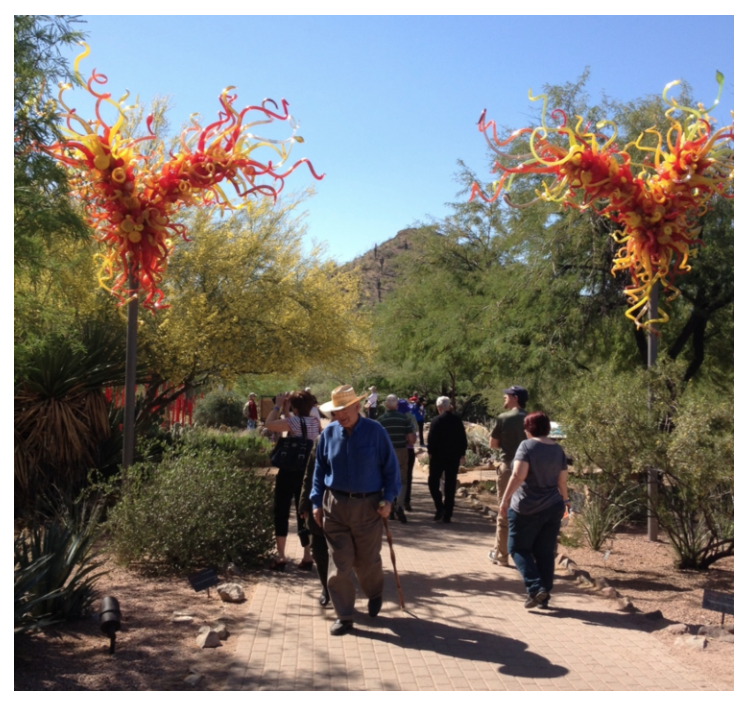 Phoenix's Botanical Gardens is a great walk in a park .  LInk:  Botanical Garden: Right Place! Right Time!