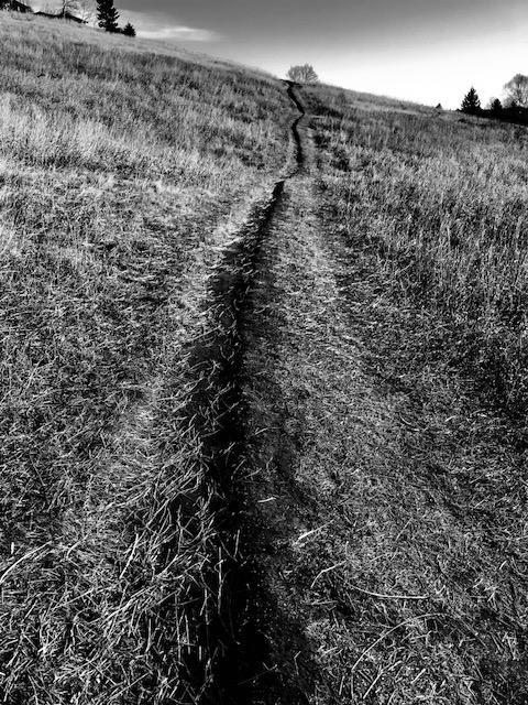 Pathways, Calgary
