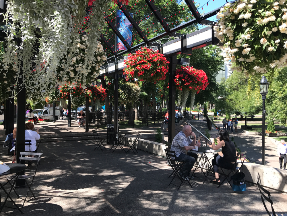Olympic Plaza is a great spot to sit and watch the world go by or chat with a friend.  Downtown has some amazing public spaces.