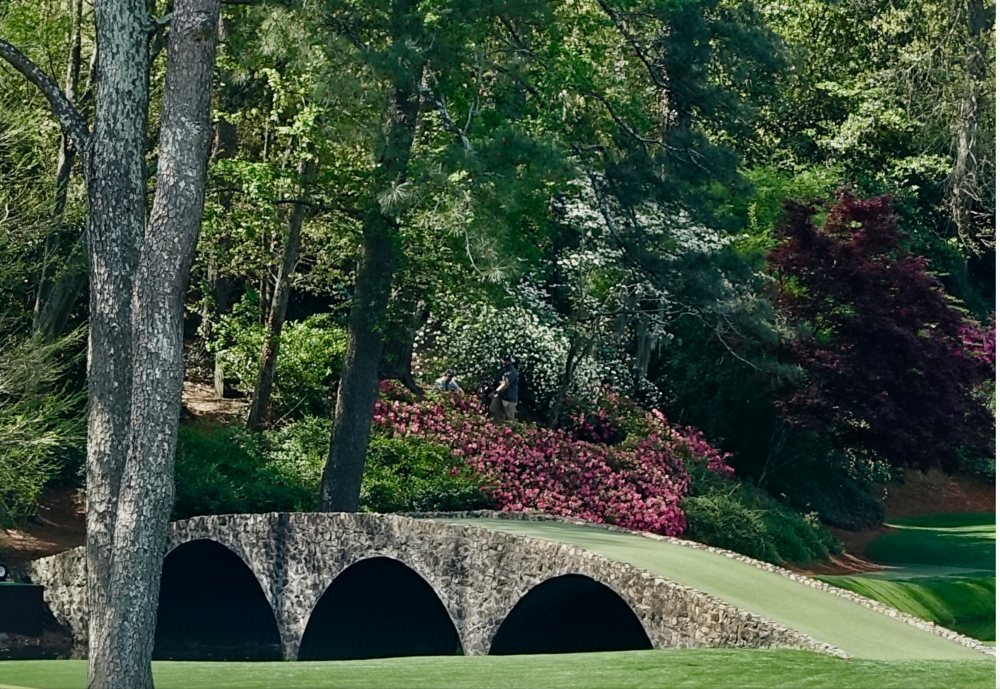 Augusta National is drop dead gorgeous.