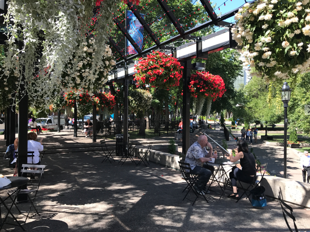Calgary's Olympic Plaza is a colourful oasis in the summer.