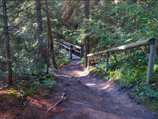 The Douglas Fir Trail is just one of the many places in Calgary's river valley where you can escape the city.