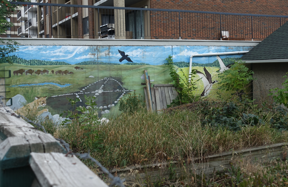 Found this mural while on the BUMP tour in someone's backyard. Interesting mix of nature and indigenous elements.