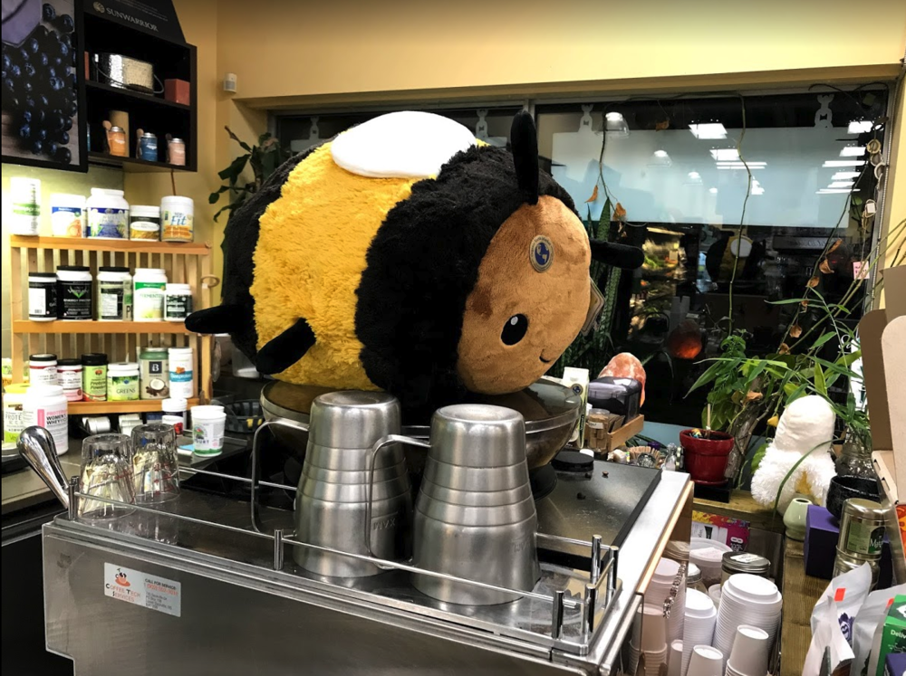 Quinpool's Organic Earth Market has large stuffies hanging out in strange places throughout the store. Very cool.