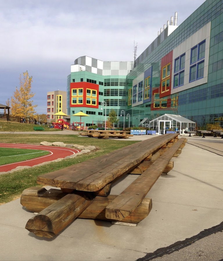 The grounds around the hospital have huge picnic tables as part of a large creative playground.