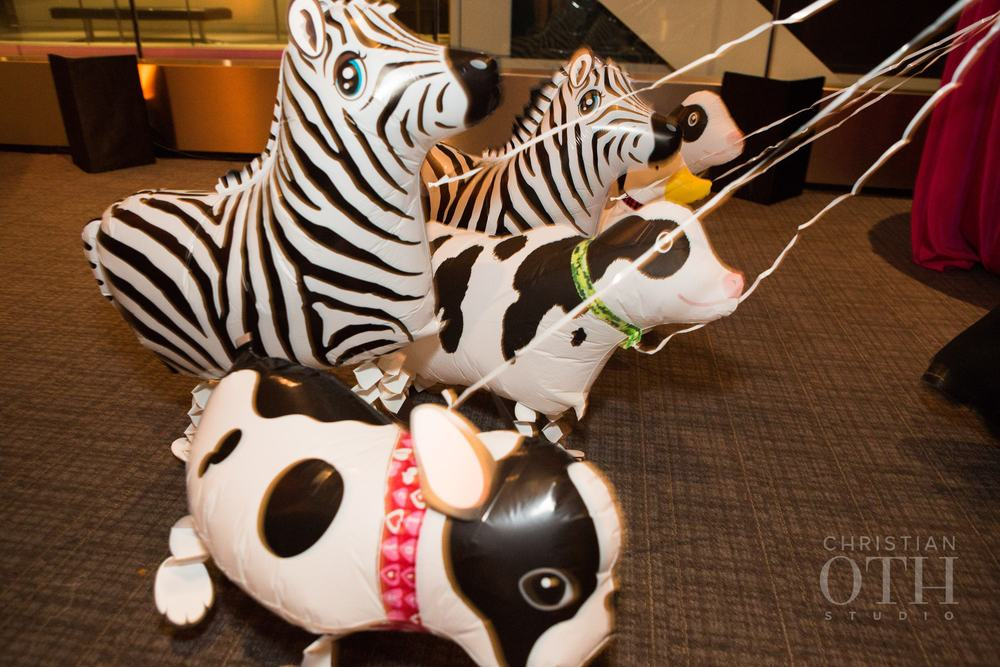 BALLOON PET ANIMALS