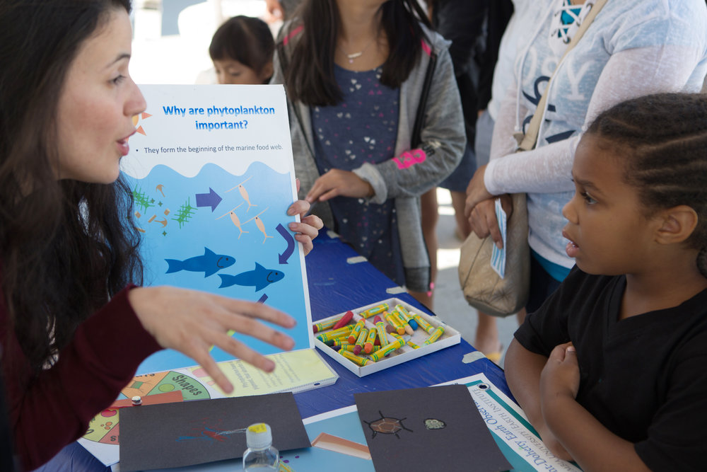 Learning about phytoplankton
