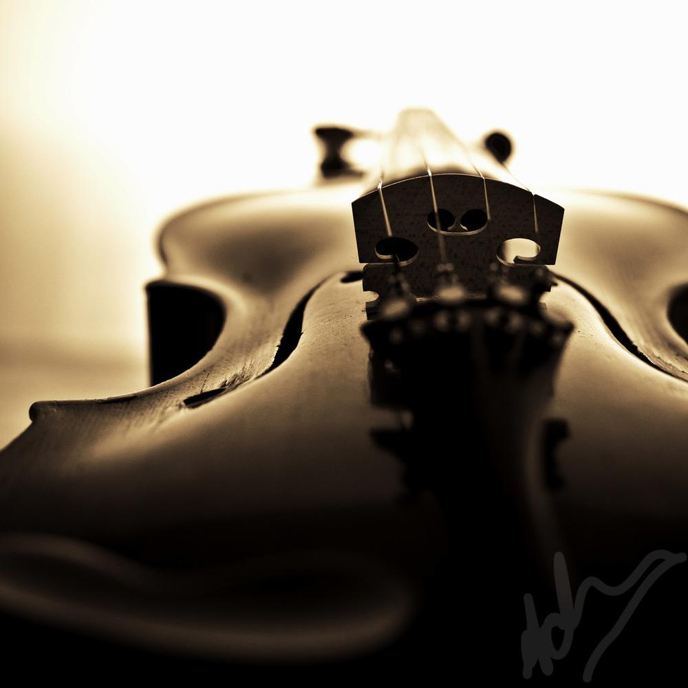 violin-017 sqyare.jpg
