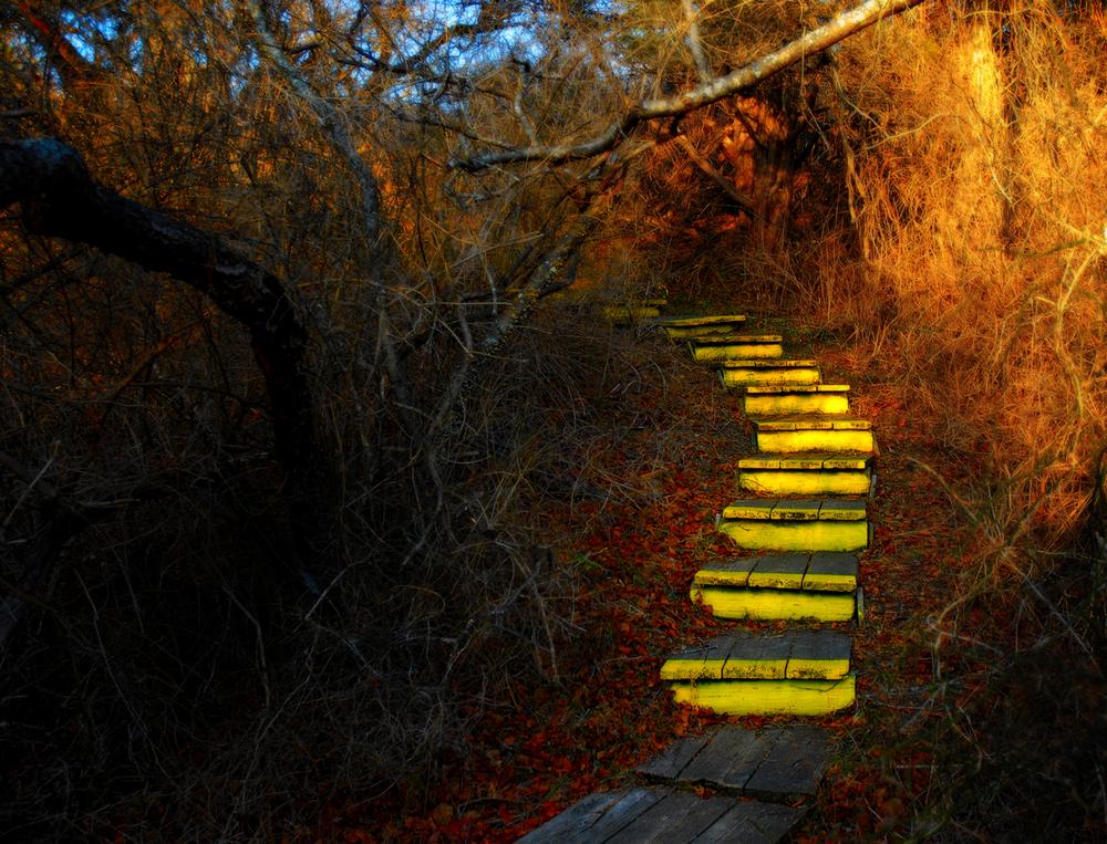 2012_yellow_stairs_sm2.jpg