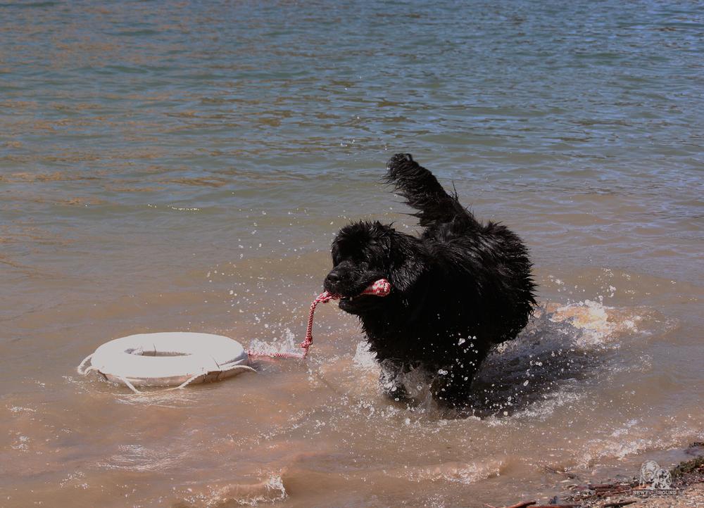 2013-07-13-Water-Test.jpg
