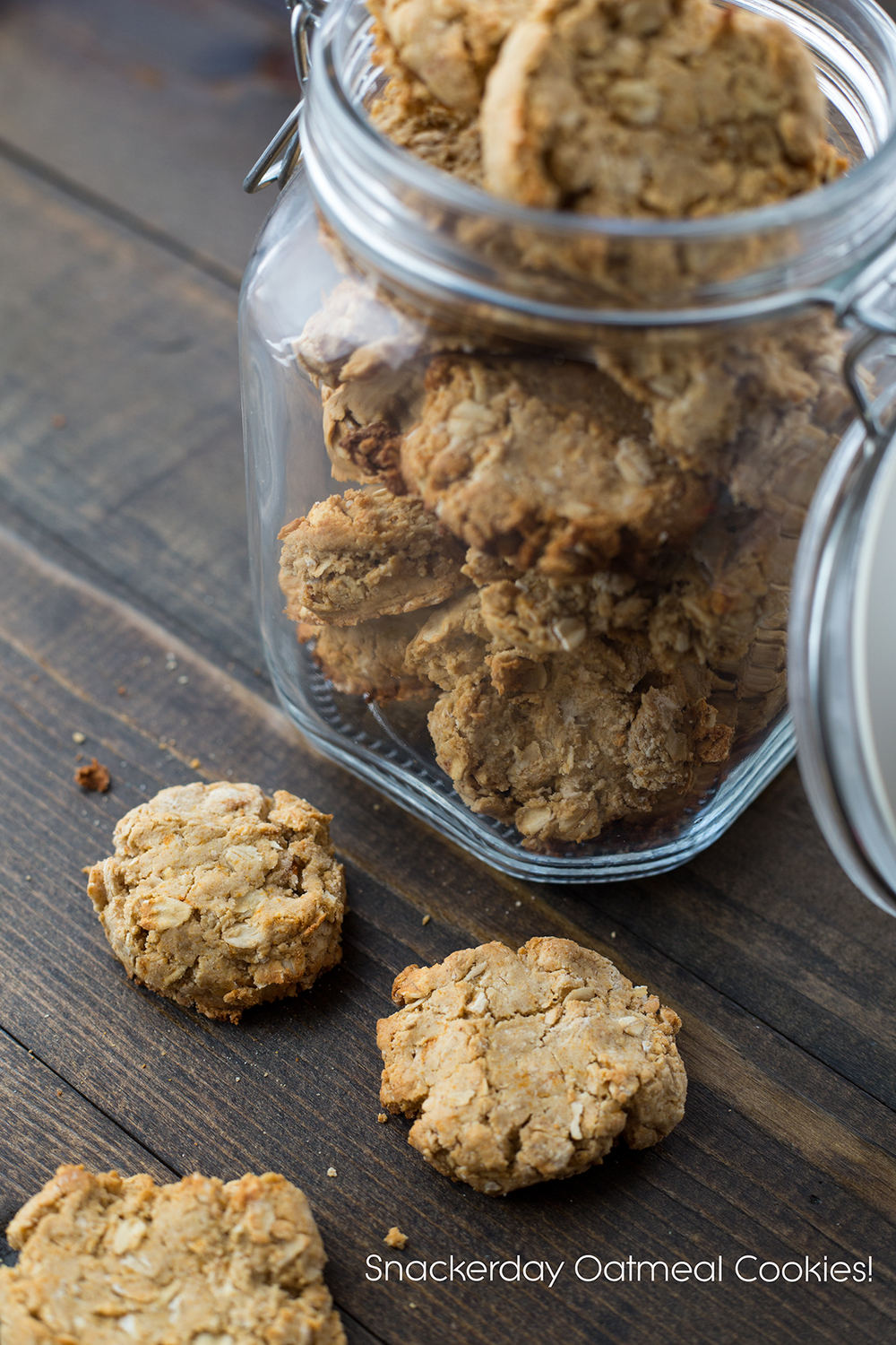 diy dog cookies, oatmeal cookies, dog treats, snackerday, newfandhound