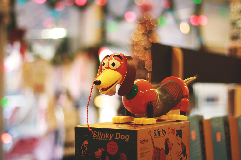 Slinky Dog_January Solace Photos.jpg