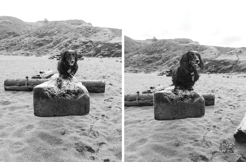 Nooner at Rodeo Beach on the teeter-totter!