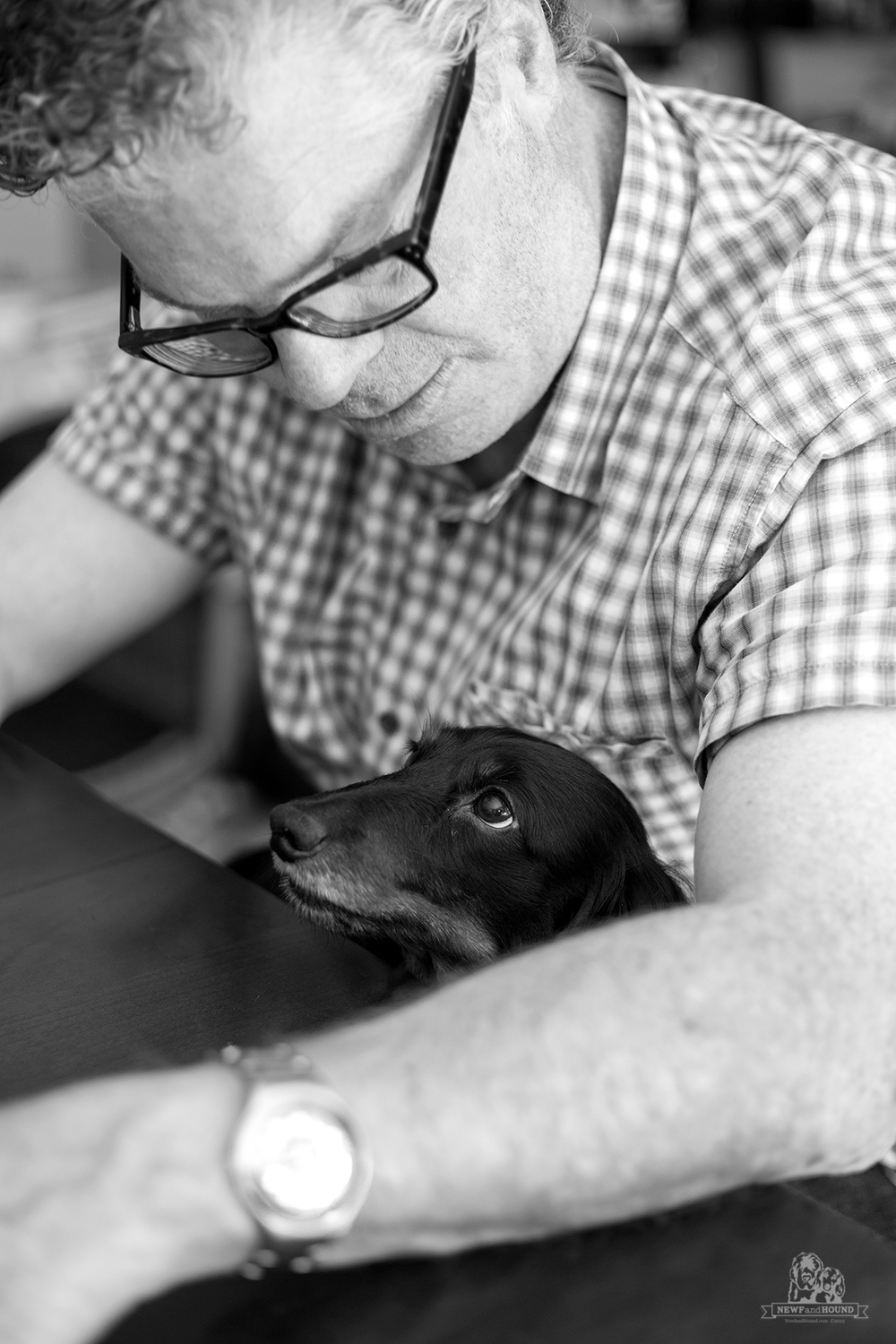 NewfandHound- Happy Father's Day- Black and White Sunday