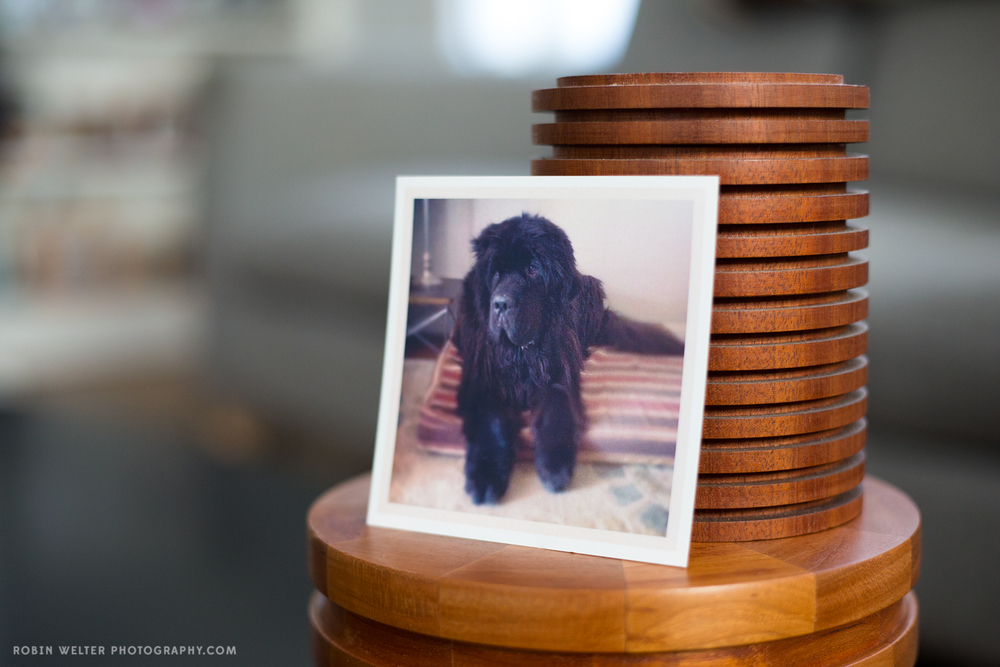 NewfandHound- Pet Urns by SDI Woodworking on Etsy