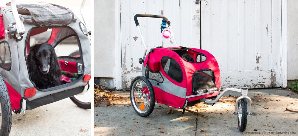 NewfandHound- Ernie's Solvit Stroller
