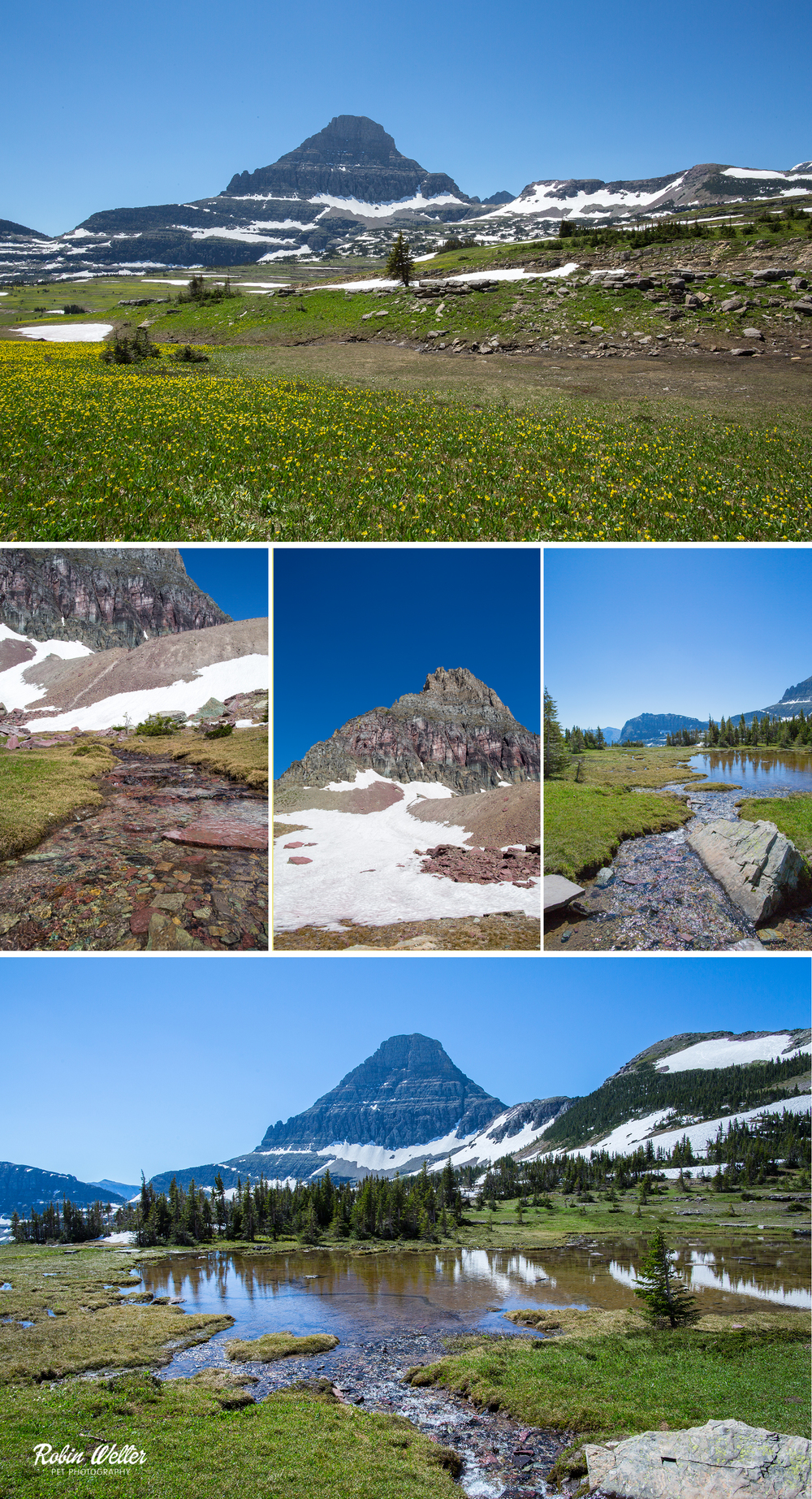 Trail to Hidden Lake, Glacier National Park | ©2015 Robin Welter Photography