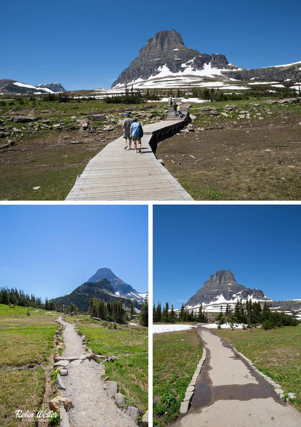 Logan's Pass, Glacier National Park | ©2015 Robin Welter Photography