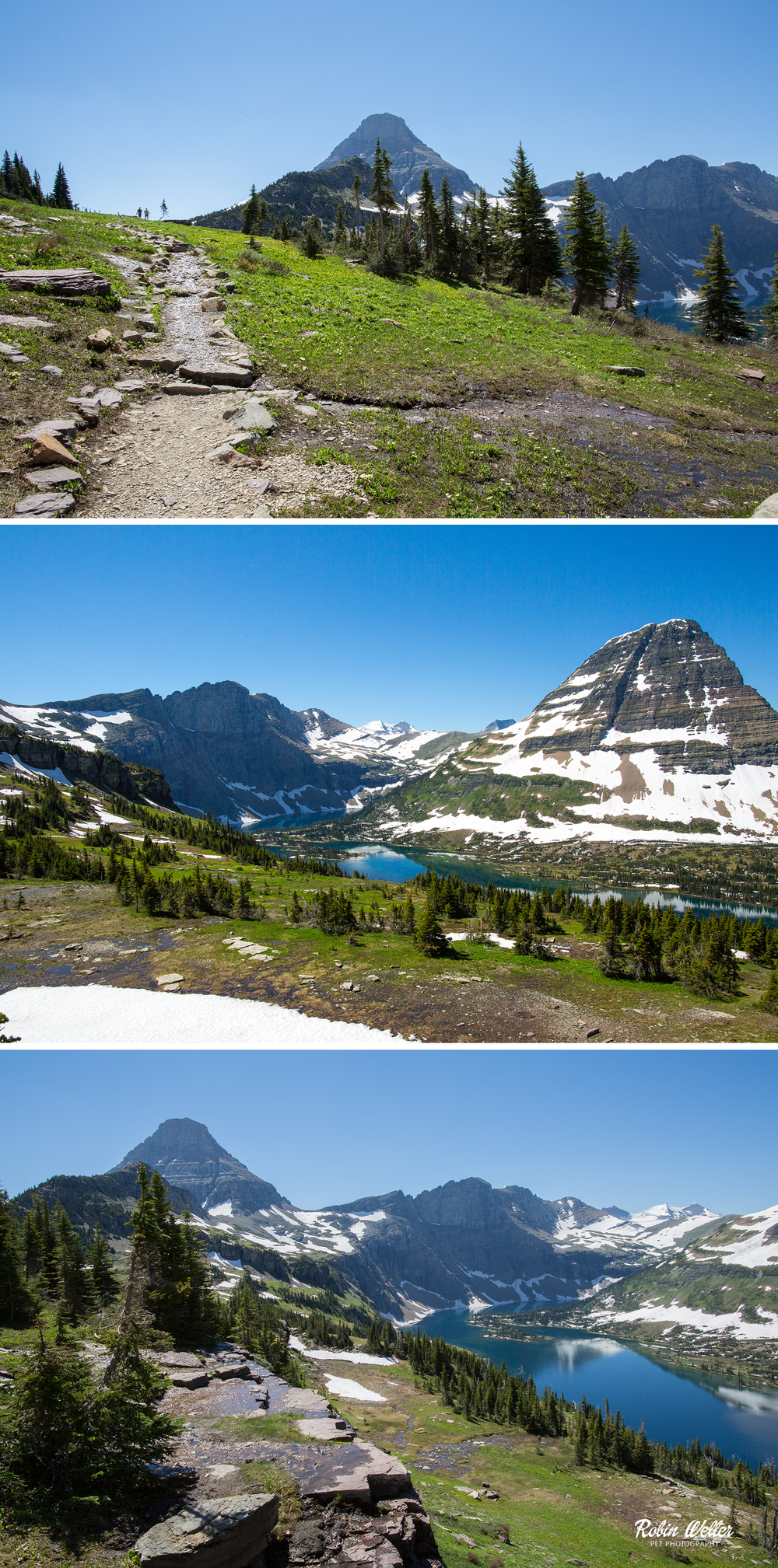 Hidden Lake, Glacier National Park | ©2015 Robin Welter Photography