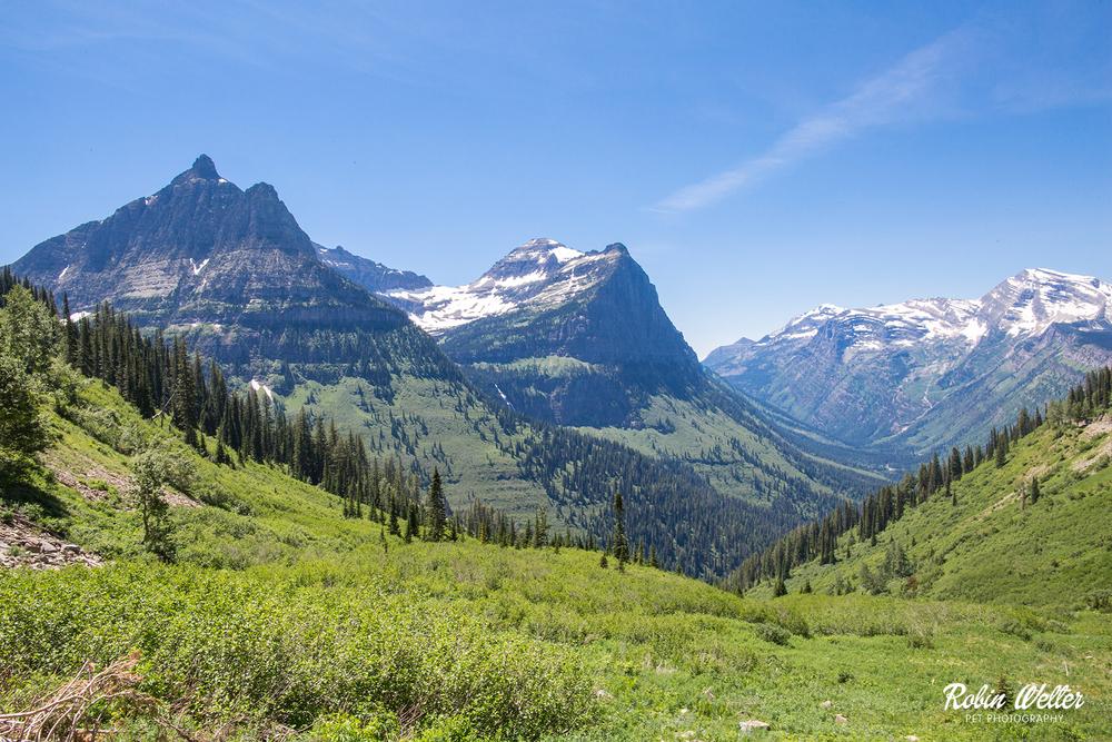 Glacier National Park | ©2015 Robin Welter Photography