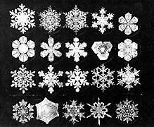 Bentley Snowflakes. Photo Credit:http://snowflakebentley.com/bio.htm