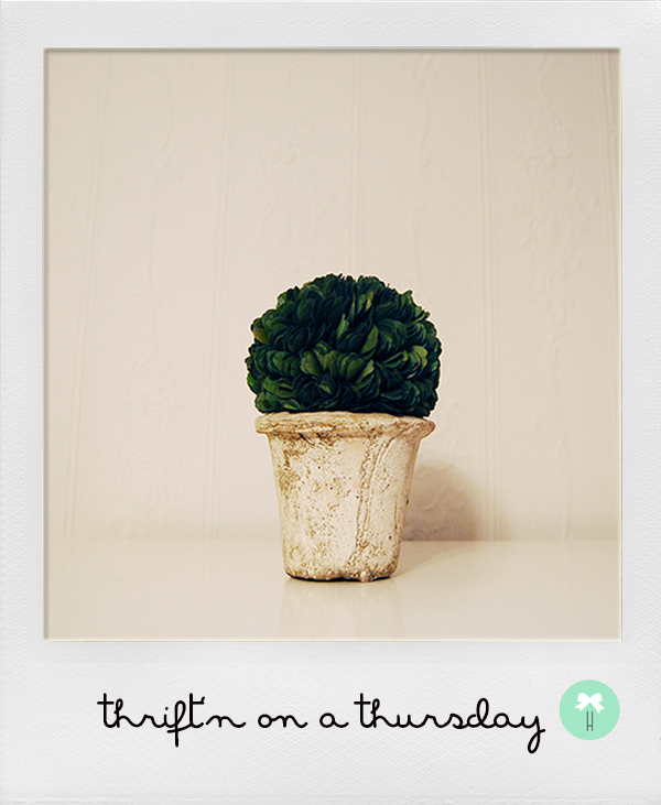 topiary_plant_french_inspired_thrift_prop_styling.jpg