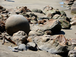A perfect sphere amidst the broken remains of many eroded Moeraki Boulders!