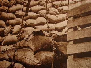 This is a picture of an old picture of how the malt used to be stored. At some point the factory had a really bad case of mice. Cats were introduced to get rid of the mice, but the cats had kittens and continued to multiply! Can you spot the kitten in this picture?