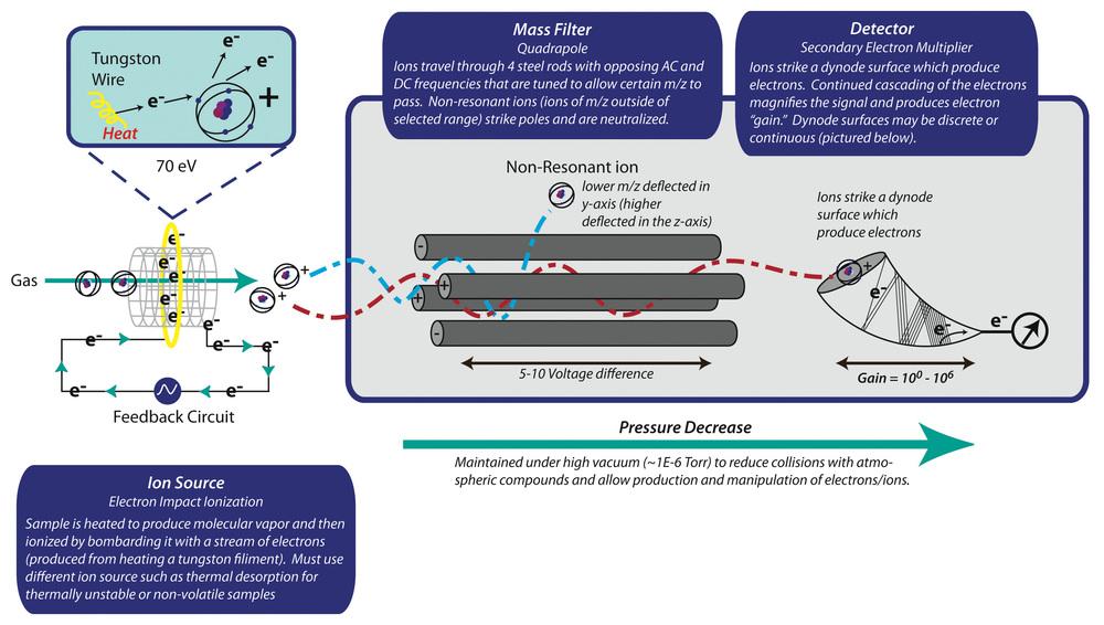 How an Electron Impact (EI) quadrapole mass spectrometer works. Image created in Adobe Illustrator CS6